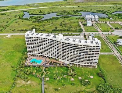 Galveston Mid/High-Rise For Sale: 1401 E Beach Drive #603
