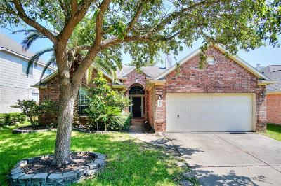 Sugar Land Single Family Home For Sale: 3118 Stratford Bend Drive