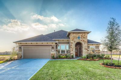 Tomball Single Family Home For Sale: 21611 Albertine Drive