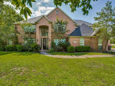 Fort Bend County Single Family Home For Sale: 9006 Royal Crest Lane