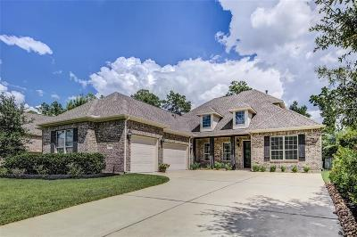 The Woodlands Single Family Home For Sale: 18 Red Moon Place