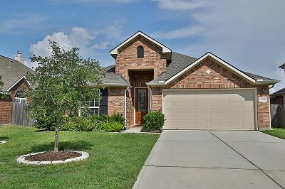 Tomball Single Family Home For Sale: 17510 Stamford Oaks Drive