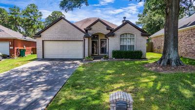 Willis Single Family Home For Sale: 7031 Gentle Breeze Drive