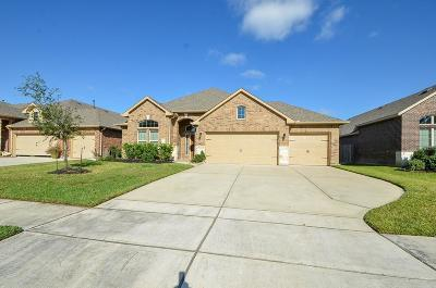 Single Family Home For Sale: 18114 Oliveria Way