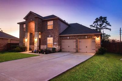 Hockley Single Family Home For Sale: 20635 Silver Tea Avenue