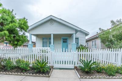 Galveston Single Family Home For Sale: 1017 Avenue M