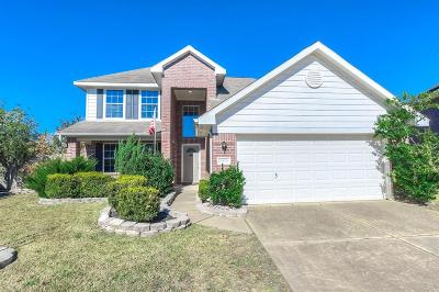 Katy Single Family Home For Sale: 20026 Diamond Hills Lane