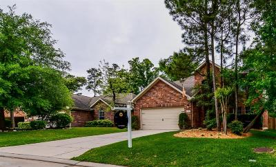 The Woodlands Single Family Home For Sale: 14 Garden Lodge Place