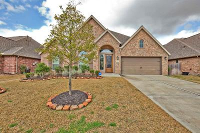 Rosenberg Single Family Home For Sale: 6321 Milam Branch Lane
