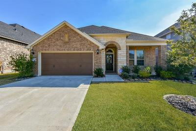 Conroe TX Single Family Home For Sale: $279,000