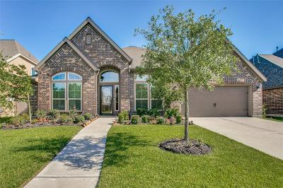 Pearland Single Family Home For Sale: 13606 Imperial Island Lane