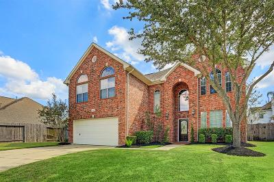 Pearland Single Family Home For Sale: 9002 Sunny Brook Lane