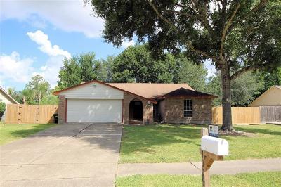 Friendswood Single Family Home For Sale: 1009 Killarney Avenue