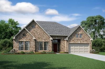 Houston Single Family Home For Sale: 12807 Lott Avenue