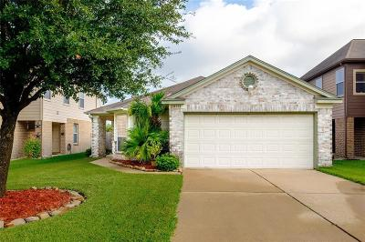 Katy Single Family Home For Sale: 20118 Ricewood Village Trail
