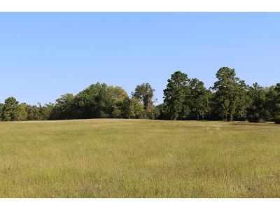 Montgomery Farm & Ranch For Sale: 21087 Arnsworth
