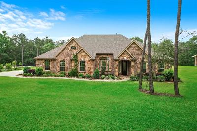 Conroe Single Family Home For Sale: 9542 Longmire Oaks Drive