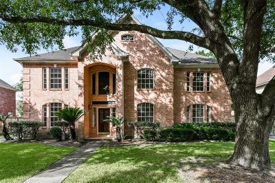 Houston Single Family Home For Sale: 15302 Ripplewind Lane
