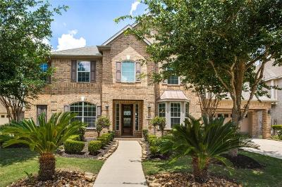 Sugar Land Single Family Home For Sale: 410 McAllister Avenue
