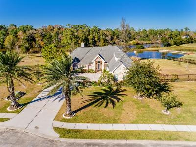 Dickinson Single Family Home For Sale: 1309 Forest Cove Court