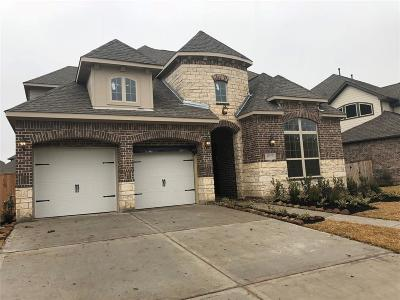 Pearland Single Family Home For Sale: 11703 Cascade Falls
