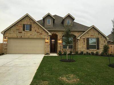 Rosenberg Single Family Home For Sale: 7010 Belle Meadow Lane