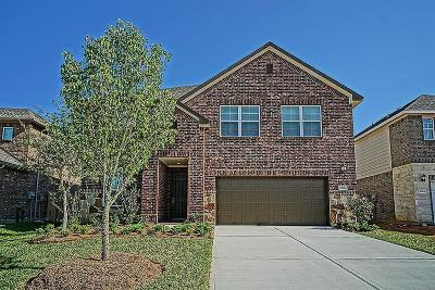 Fort Bend County Single Family Home For Sale: 27027 Soapstone Terrace Lane