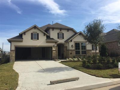 Creekside Park, Creekside Single Family Home For Sale: 54 N Braided Branch Drive