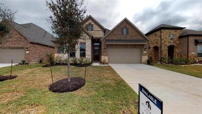 Lakes Of Savannah Single Family Home For Sale: 4915 Gingerwood Trace