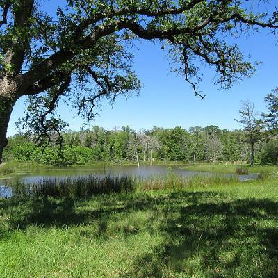 New Ulm Farm & Ranch For Sale: Abel