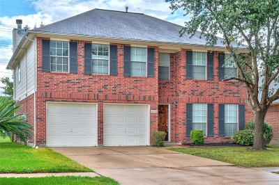 Houston Single Family Home For Sale: 16126 Coleburn Drive