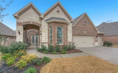 Conroe Single Family Home For Sale: 2727 Lake Shadow Drive
