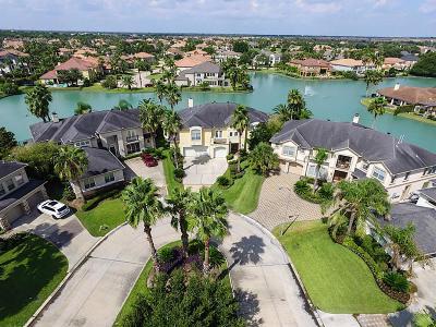 Houston Single Family Home For Sale: 13614 Bylake Court