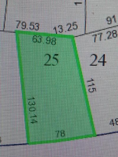 Houston Single Family Home For Sale: 5146 Grape Street