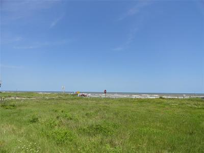 Galveston Residential Lots & Land For Sale: 12902 Bermuda Beach Drive