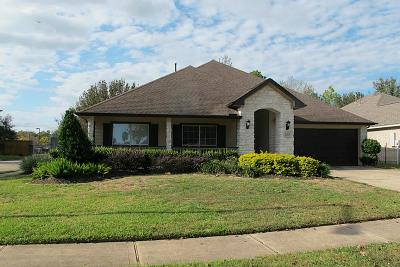 Friendswood Rental For Rent: 1490 Garden Lakes Drive #656R