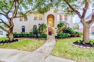 Houston Single Family Home For Sale: 3411 Shadow Bluff Court