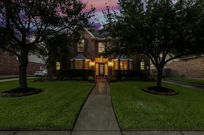 Katy Single Family Home For Sale: 26207 Park Ivy Lane