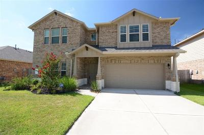 Conroe Single Family Home For Sale: 135 Meadow Valley Drive