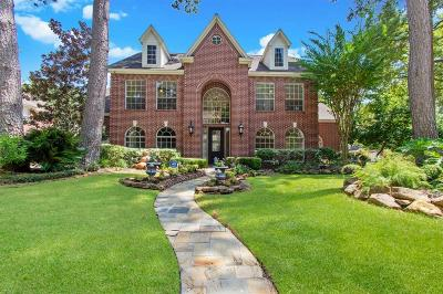 Houston Single Family Home For Sale: 6927 Penny Court