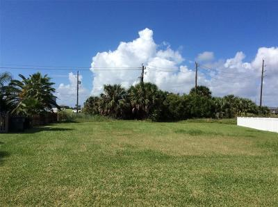 Galveston Residential Lots & Land For Sale: 13944 Pirates Beach Boulevard