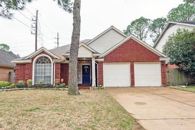Single Family Home For Sale: 8627 Plum Lake Drive