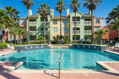 Galveston Condo/Townhouse For Sale: 7000 Seawall Boulevard #412