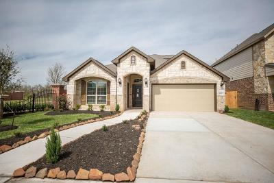 Missouri City Single Family Home For Sale: 10803 High Red Mesa