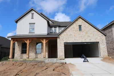 The Woodlands Single Family Home For Sale: 37 Botanical Vista Drive