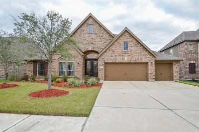 Pearland Single Family Home For Sale: 2717 Noble Oak Lane