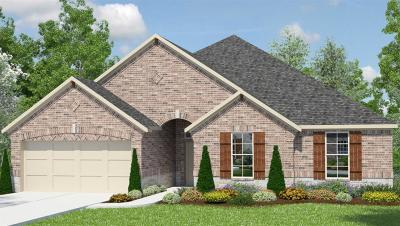 Tomball Single Family Home For Sale: 30834 Raleigh Creek Drive