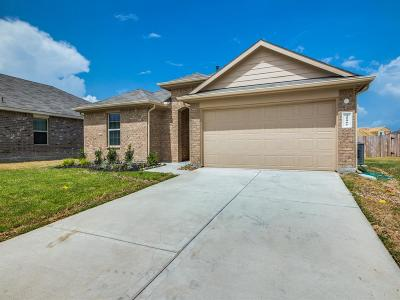 New Caney Single Family Home For Sale: 20061 Root River Drive