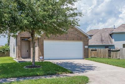 Houston Single Family Home For Sale: 13711 Mum Lane
