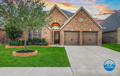 Pearland Single Family Home For Sale: 14014 Mountain Sage Court